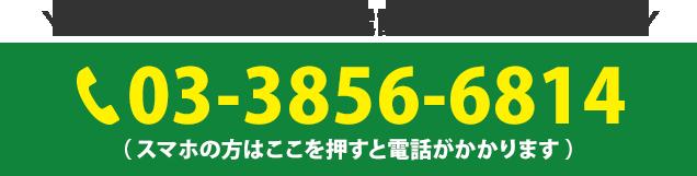 電話番号:03-3856-6814